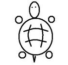 乌龟王八蛋